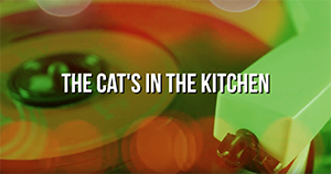The Cat's In The Kitchen